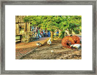 Goose At The Country Store Framed Print by Geraldine Scull