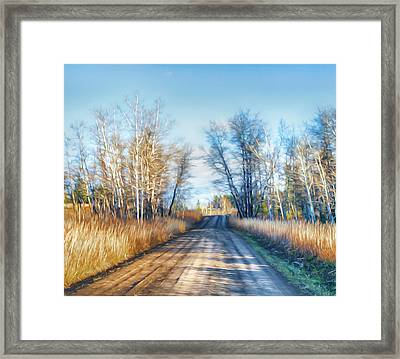 Goose Lake Road Framed Print by Theresa Tahara