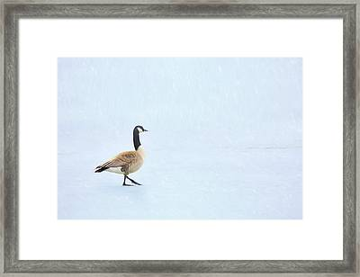 Framed Print featuring the photograph Goose Step by Nikolyn McDonald