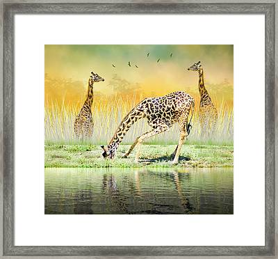 Framed Print featuring the photograph Gopher I Know I Saw A Gorpher by Diane Schuster