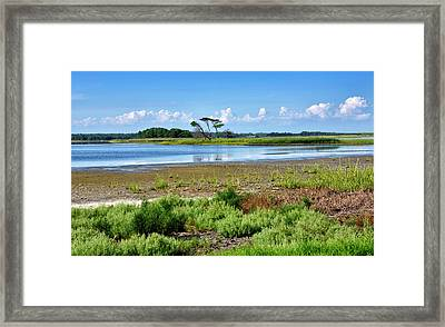 Framed Print featuring the photograph Gordons Pond At Cape Henlopen State Park - Delaware by Brendan Reals