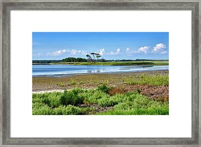 Gordons Pond At Cape Henlopen State Park - Delaware Framed Print by Brendan Reals