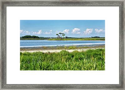 Framed Print featuring the photograph Gordons Pond - Cape Henlopen State Park - Delaware by Brendan Reals