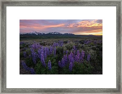 Gore Range Sunset Framed Print