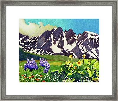 Gore Range Wildflowers Framed Print