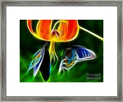 Gorgeous Butterflies Framed Print