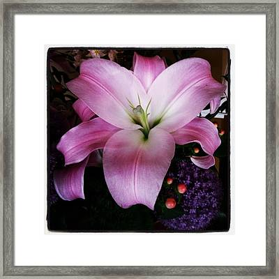 Framed Print featuring the photograph Gorgeous Flowers. Real. I Think They by Mr Photojimsf