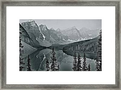Gorgeous Grayscale Framed Print
