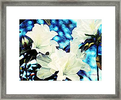 Gorgeous Framed Print by Leanne Seymour