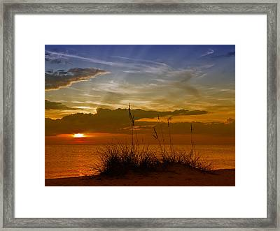 Gorgeous Sunset Framed Print by Melanie Viola