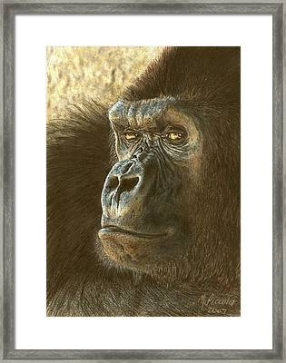 Gorilla Framed Print by Marlene Piccolin