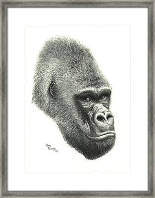 Gorilla Framed Print by Mary Rogers