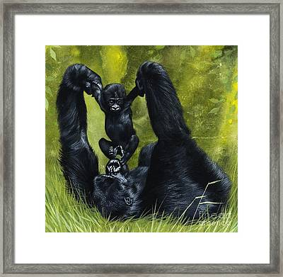Gorilla Playing With Baby Framed Print