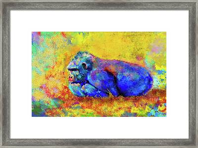 Framed Print featuring the photograph Gorilla by Test