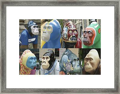 Gorillas In The Street Framed Print