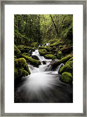 Gorton Creek Framed Print by Brian Bonham