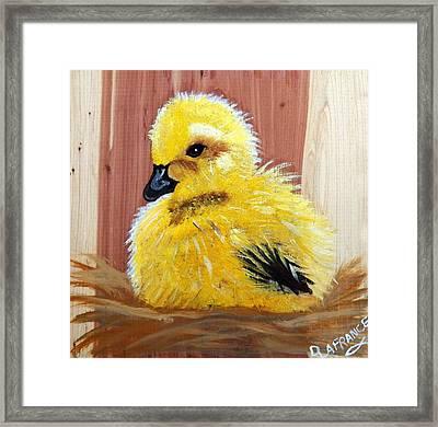 Gosling On Cedar Framed Print