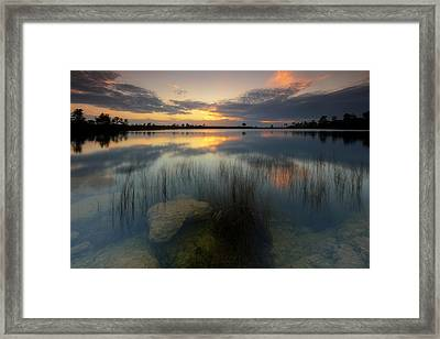Framed Print featuring the photograph Gossamer Glades by Mike Lang