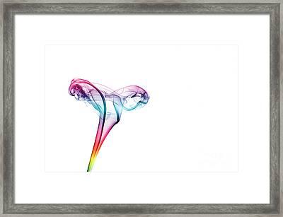 Gossamer Framed Print by Steve Purnell