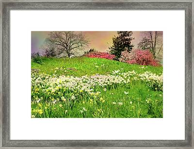 Framed Print featuring the photograph Got A Thing For You by Diana Angstadt