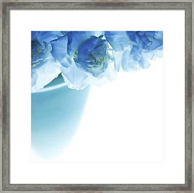 Got The Blues Framed Print by Rebecca Cozart