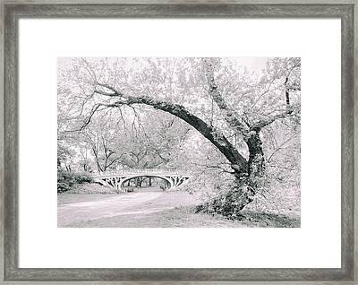 Gothic Bridge 28 Framed Print
