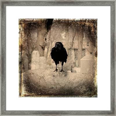 Gothic Sepia Crow Framed Print by Gothicrow Images