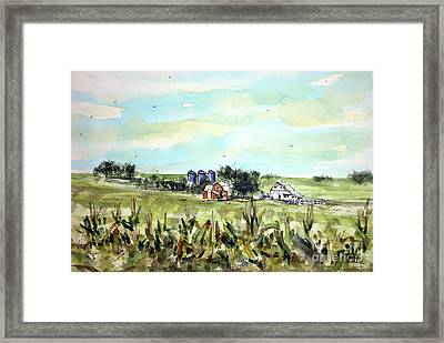 Gottsch's Green Acres Framed Print by Tim Ross