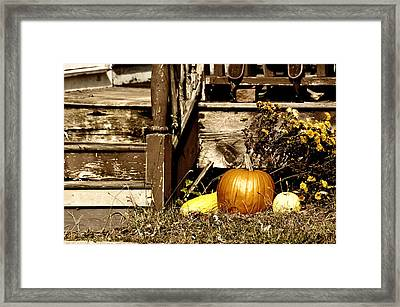 Gourding The Porch Framed Print