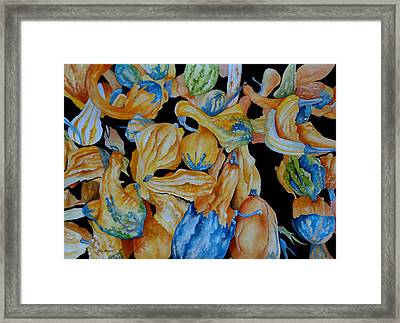 Gourds Galore Framed Print by Rosie Brown