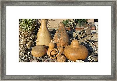 Gourds In The Sun Framed Print by Barbara Prestridge