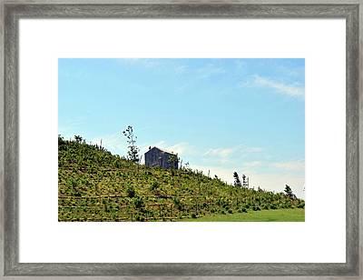 Governors Island Hills Framed Print
