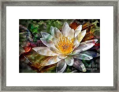 Grace Framed Print by Clare Bevan