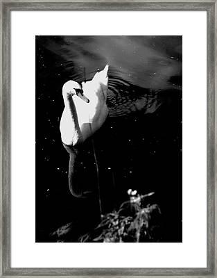 Grace Framed Print by HweeYen Ong