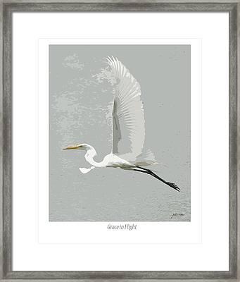 Grace In Flight Framed Print