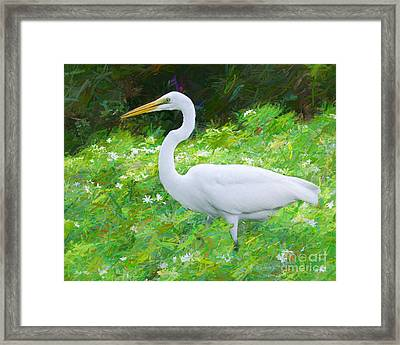 Grace In Nature Framed Print