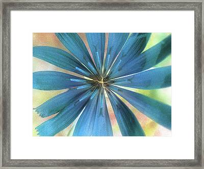 Grace Framed Print by Molly McPherson