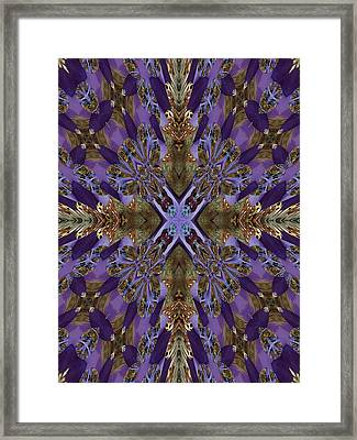 Graceful And Devine Framed Print by Ricky Kendall