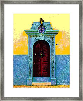 Graceful Door By Darian Day Framed Print