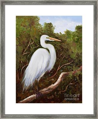 Graceful Egret Framed Print