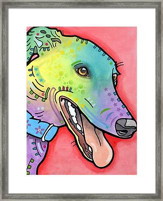 Graceful Greyhound Framed Print by Dean Russo