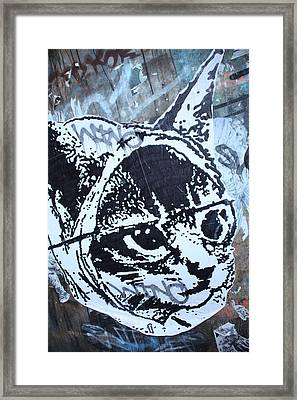 Graf Cat Framed Print by Jez C Self