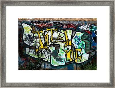 Graffiti Fort Armistead Baltimore Maryland Framed Print by Wayne Higgs