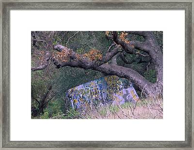 Graffiti Framed Print by Soli Deo Gloria Wilderness And Wildlife Photography