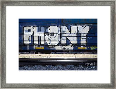 Grafitti Art Riding The Rails 4 Framed Print