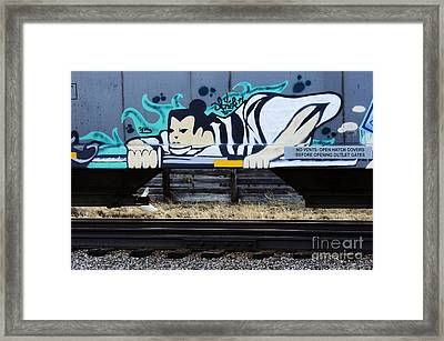 Grafitti Art Riding The Rails Framed Print