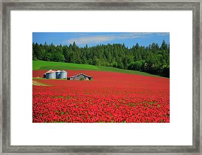 Grain Bins Barn Red Clover Framed Print