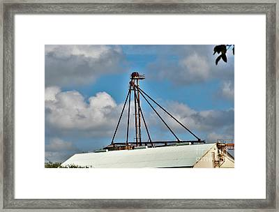 Framed Print featuring the photograph Grain Is Life ...  by Ray Shrewsberry