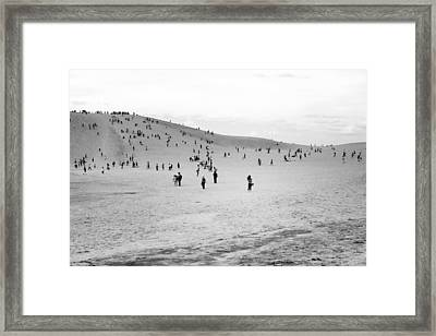 Grains Of Sand Framed Print