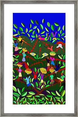 Gran Bwa Framed Print by Dimitri Beaulieu
